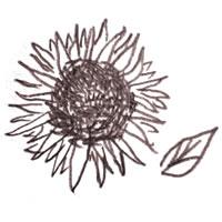 フリー素材:アイコン(twitter):北欧風のシンプルな茶色のドローイングペン画風のひまわり;200×200pix