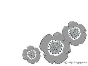 フリー素材:北欧風のグレーのケシの花のイラスト;640×480pix