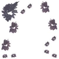 フリー素材:アイコン;北欧風のモノトーンの小花のフレーム(twitter,facebook,ブログ可);200×200pix