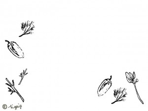 秋のフレーム:ペン画のスケッチ風のどんぐりと葉っぱのイラストのフリー素材;640×480pix