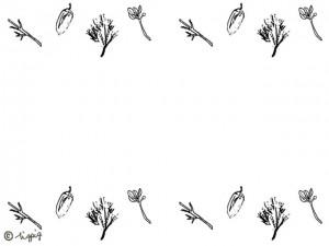 ペン画のスケッチ風のどんぐりと葉っぱの秋のイラストのフレームのフリー素材;640×480pix