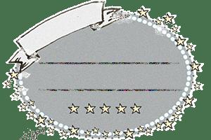 webデザインに使える大人可愛いリボンと星のラベル:300×200pix