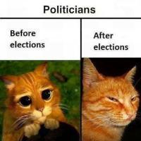Humor Político-Económico Mix-11