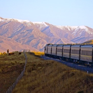 Trans Siberian Express – trip of a lifetime!