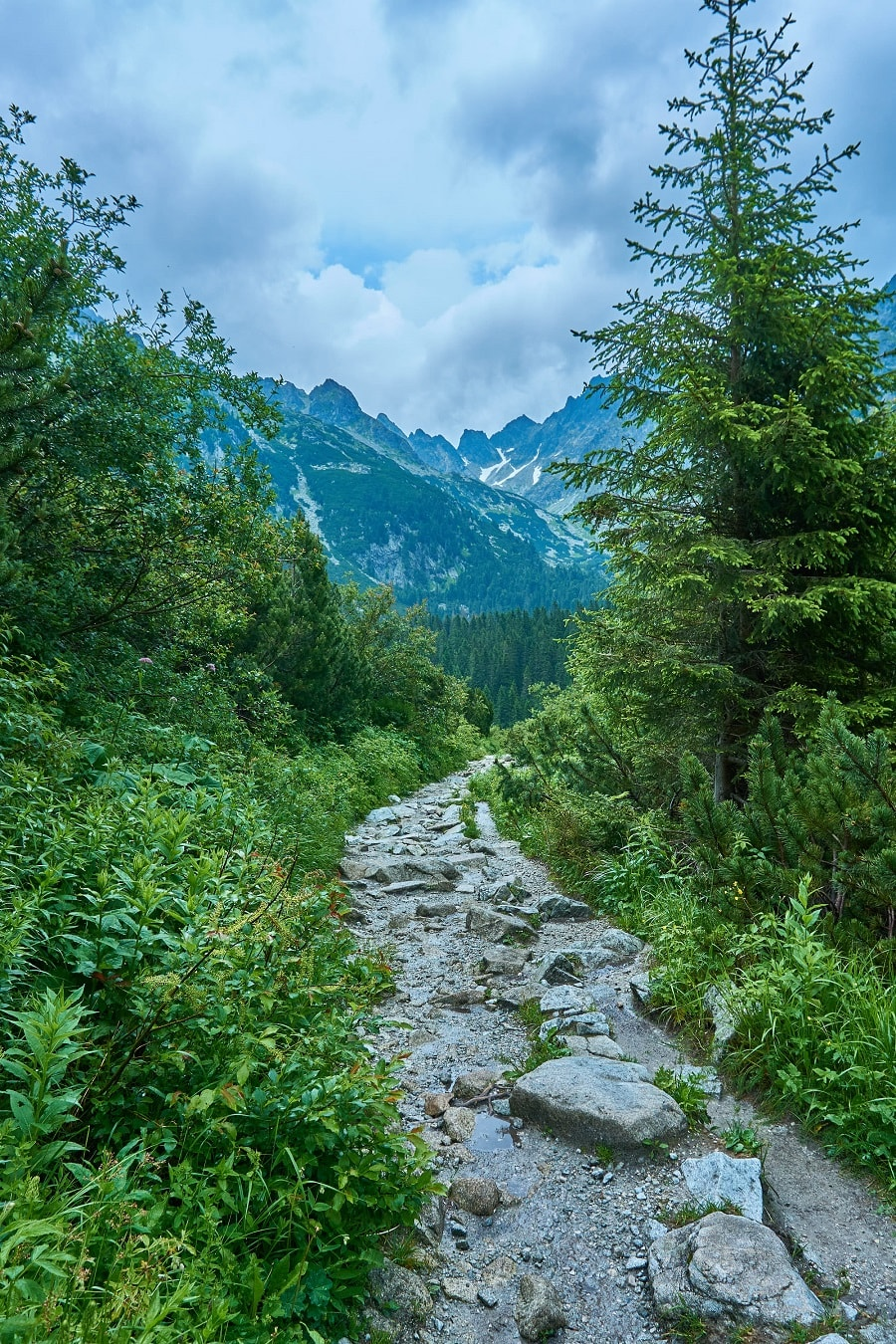 Hiking in High Tatras