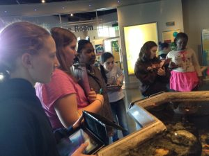 A group of Edmunds 6th graders check out Echo's tidepool exhibit while collecting resources to build their own ARIS video games.