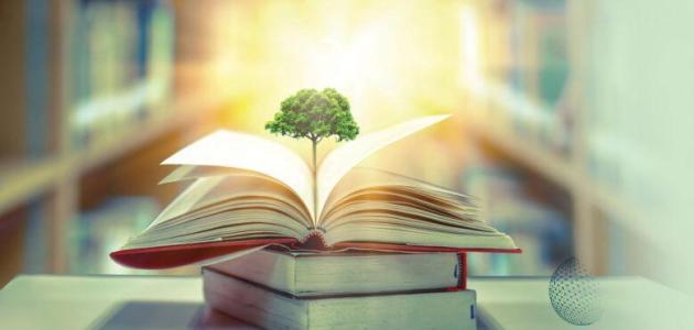 كيف تخطط لجودة التعليم ولمستقبل اقتصادي مبهر