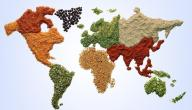 How to Learn Food Trade