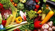 متى هي أوقات مناسبة لزراعة الخضروات