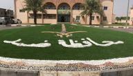 مشاريع المربحة في مدينة ضمد