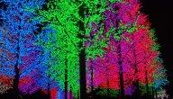 ما هي مكونات لمبات الليد LED