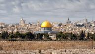 أهم المنتجات صادرات الفلسطينية وأهمية المنتجات الفلسطينية في الاسواق