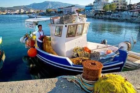 المشاريع الزراعية المربحة في اليونان