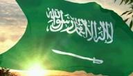 معروض للديوان الملكي لتسديد ديون السعودية