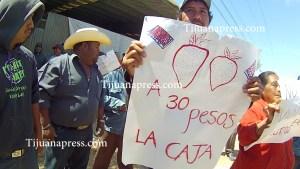 jornaleros de san quintin en huelga2
