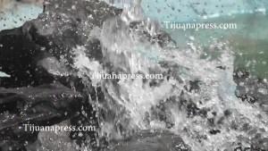 agua(1)