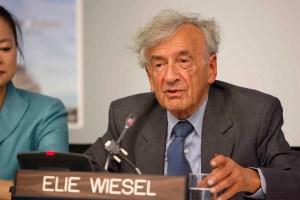 Wiesel-big