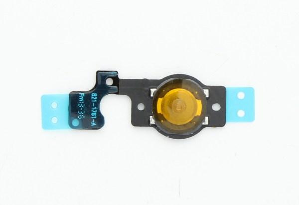 אייפון 5C כפתור בית (פלקס)