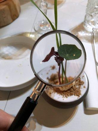 Dutch Design Week 2017 - Future of Food - Design Diner (16)