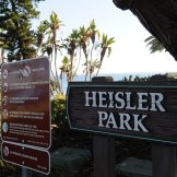 I dropped down in Heisler park. I just love that park and walkin' down the coast from there.