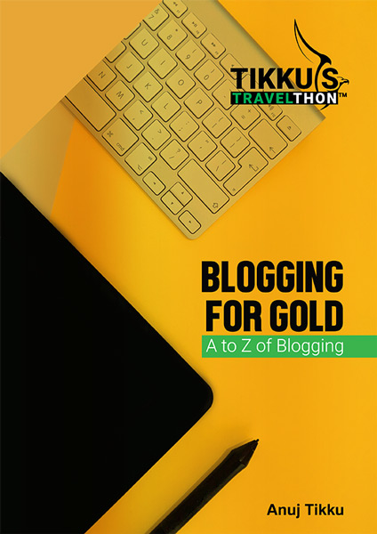 Blogging for Gold Ebook Launch