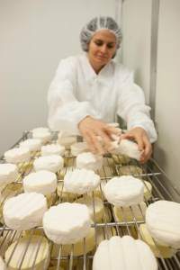 Erica Dibden Cheese Maker