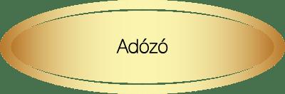 Adószakértői terület - Adózó
