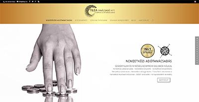 TILEA Consulting Ltd.