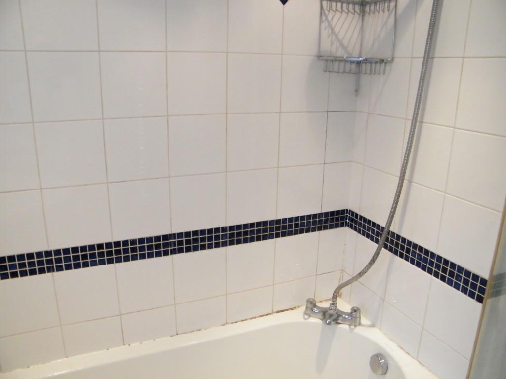 ceramic tiled bathroom shower clean