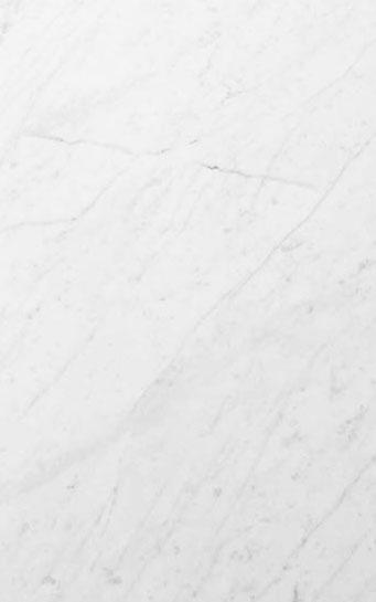 Bianco Carrara 5x8 Panel