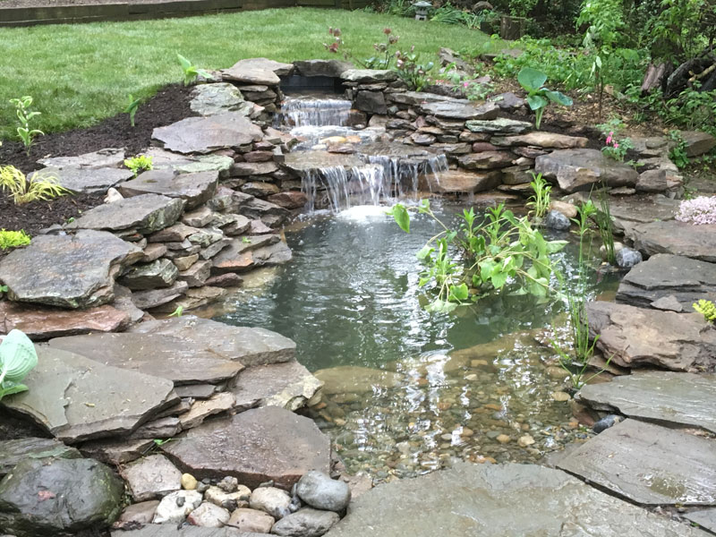 pond and waterfall