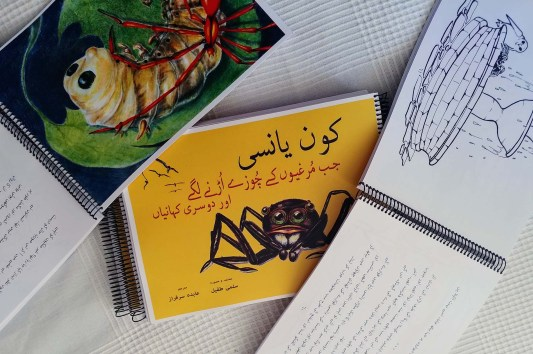 Con Yanci in Urdu