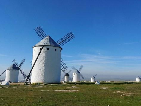 Don Quixote and Consuegra