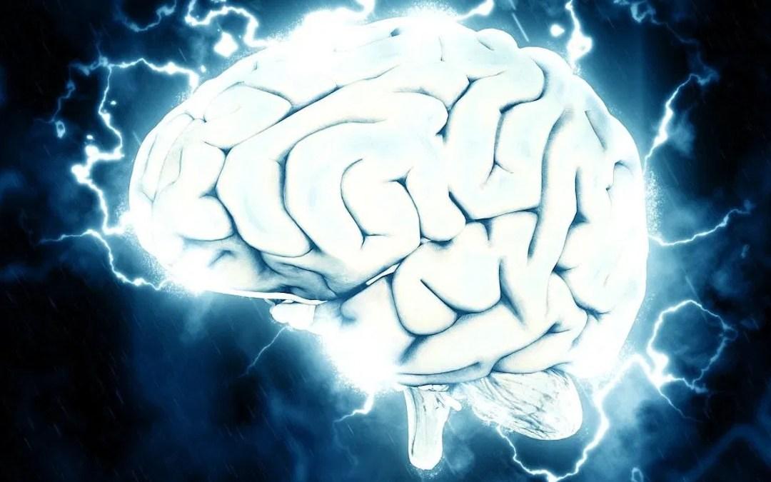 Hjernen lurer deg når du skal ta beslutninger. Slik lurer du den tilbake