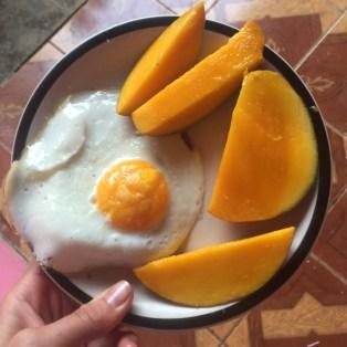 mango-costa-rica