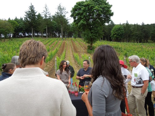 Tasting in the vineyard at Momtazi.