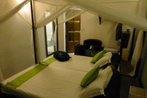 Another view