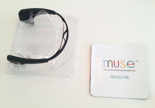 The 2014 Muse headband
