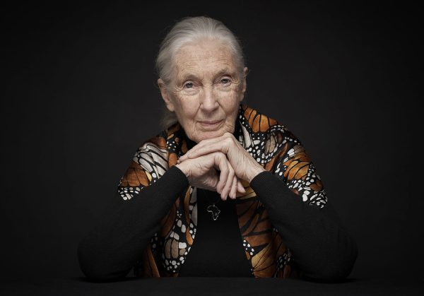 The Tim Ferriss Show Transcripts: Dr. Jane Goodall — The Legend, The Lessons, The Hope (#421)