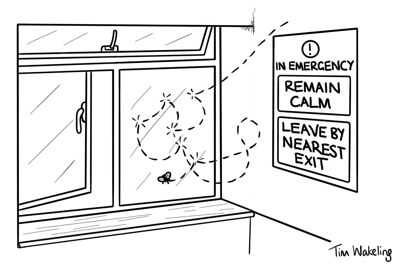 Cartoons By Tim Wakeling