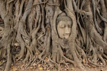 Ayutthayas Top Motiv