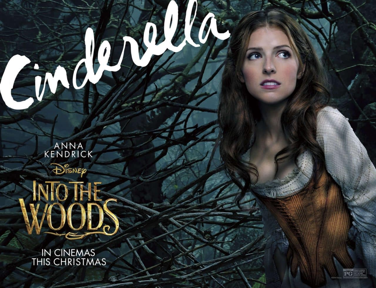 INTO THE WOODS - CINDERELLA