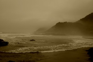 Oregon Coast 8929