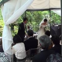 Realizado primeiro casamento onde o 'padre' era um robot