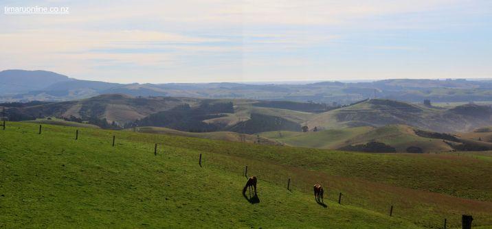 Totara Valley Trail Ride 00055