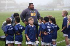 Junior Rugby Kicks Off 00023
