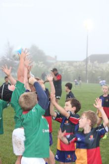 Junior Rugby Kicks Off 00104