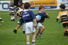 Junior Rugby Kicks Off 00146