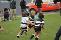 Junior Rugby Kicks Off 00511