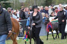 Mackenzie Show Grand Parade 0095